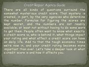Credit Repair Agency Guide