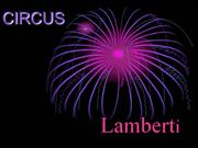 Circus Lamberti - David Morhan  6a (2010)