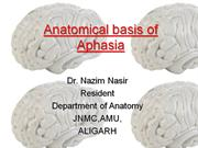 ANATOMICAL BASIS OF APHASIA