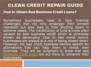Clean Credit Repair Guide