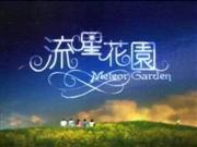Can't Lose You - Meteor Garden..