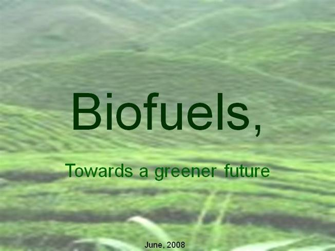 Optimisation of biodiesel production powerpoint slides.