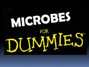 microbes for dummies