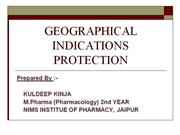 geographical indications protection
