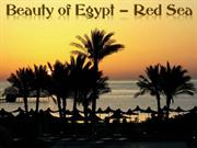 BEAUTY OF EGYPT-Red Sea