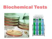 biochemical test - Copy