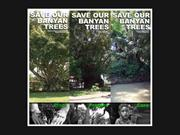 SAVE BANYAN TREE