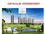 Jaypee Greens The Orchards Sector 131 Noida | +919560214267