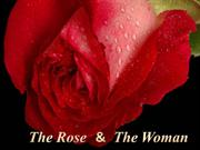 The rose and the woman