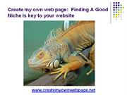 Importance Of Finding A Good Niche For Your Website