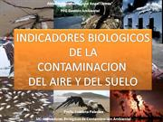 INDICADORES DE CONTAMINACION AIRE Y SUELO