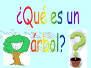 Que es un arbol?