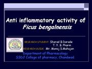Anti-inflammatory Activity of Ficus Bengalensis By Sharad Darade