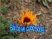 bai ca ve cuoc song
