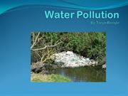 Beegle - Water Pollution