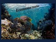 ecosistema marino