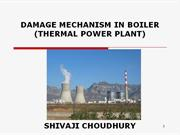 damage mechanism in boiler (thermal power plant)