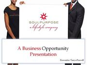 Our Team's Soul Purpose Business Opportunity Presentation