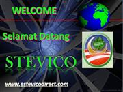 Stevico Business & Plan 2011