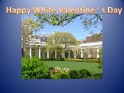 White Valentine' s Day
