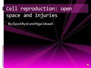 Cell Reproduction Open Space Injuries