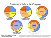 Marketing's Role in the Company business diagram