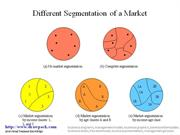 Segmentation of Market business diagram