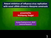potent inhibition of influenza virus replication with