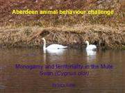 Aberdeen animal behaviour challenge