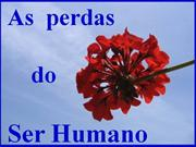 As_perdas_do_Ser_Humano
