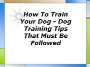 how to train your dog - dog training tips that must be followed