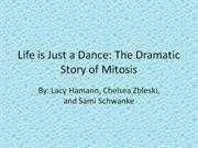 life is just a dance: the story of mitosis