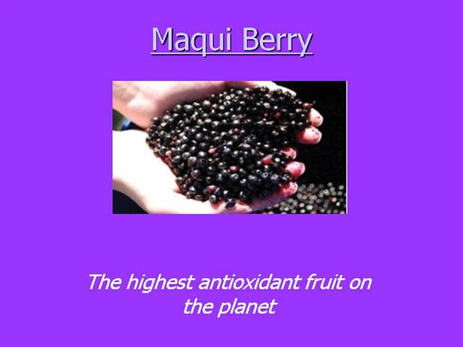 Maqui Berry Authorstream