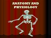 BONES AND JOINTS ANATOMY AND FISIOLOGY