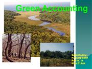 green accounting