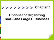 options for organizing small and large business