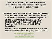 SAP Consultants for full time role at Enterprise logic