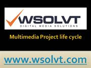 Multimedia project life cycle  wsolvt