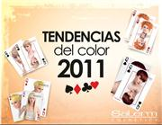 TENDENCIAS DEL COLOR 2011