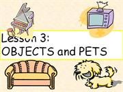 3 objects and pets
