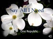 (say) all i need - one republic - lyrics