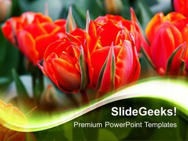 People Beautiful Flowers Nature Ppt Template Powerpoint Template