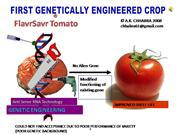 Transgenic Tomato-First Genetically Engineered Ex.