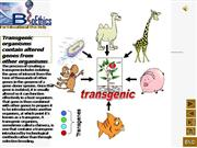 Transfer of genes has no boundries