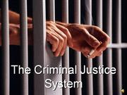 Criminal Justice System