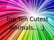 Top Ten Cutest Animals