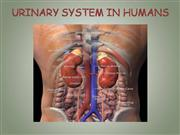 Urinary Systems