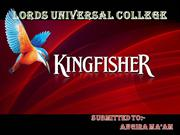 37242125-Kingfisher