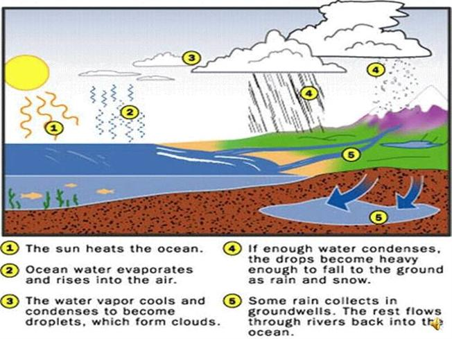 Diagram of water cycle and explanation all kind of wiring diagrams water cycle diagram authorstream rh authorstream com creative projects water cycle funny water cycle poster project ccuart Gallery