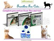 frontline for Cats